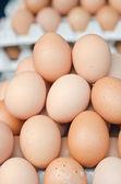 Boeren markt eieren — Stockfoto
