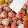 Farmers Market Onion — Stock Photo