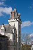 The castle of Pau — Stock Photo