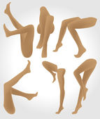 Female legs — Stock Vector