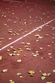 Tennis court with leaves — Stock Photo