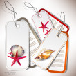 Set of Holiday Badges, Labels, Tags with shells and place for te - Imagen vectorial