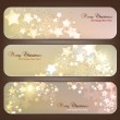 Set of Elegant Christmas banners with stars. Vector illustration — Stock Vector #13665000