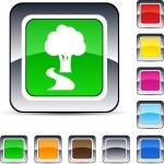 Tree square button. — Stock Vector #6159285