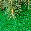 Aromatic green sea salt and fur-tree branch - Stock Photo