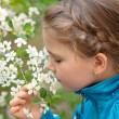 Girl smells flowers — Stock Photo