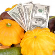 Stock Photo: Vegetables and money