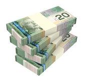 Canadian dollars money isolated on white background. — Stock Photo