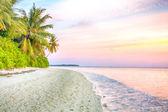 Tropical paradise. White sand palm beach at softly violet sunrise background — Stock Photo
