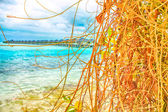 Tropikalny raj. Over-Water bungalow — Zdjęcie stockowe