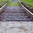 Old rails in yard — Stock Photo
