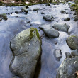 Stock Photo: River bank and in clear water of stream. Winter is beginning at