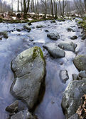 River bank and in clear water of stream. Winter is beginning at — Stock Photo