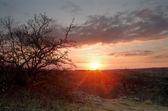 Sunrise on the river Mertvovod — 图库照片