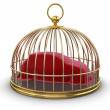 Gold Cage with Covering Car — Stockfoto