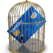 Gold Cage with Credit Card  — Stock Photo