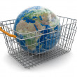 Stock Photo: Shopping Basket and Globe