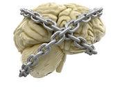 Human brain and lock — Stock Photo