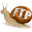 Stock Photo: FTP Snail