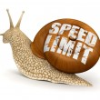 Speed Limit Snail — Stock Photo