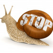 Garden snail and stop — Stock Photo