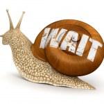 Espere o caracol — Foto Stock