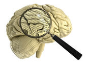 Brain under magnifying glass — Stock Photo