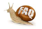 Snail and FAQ — Stock Photo