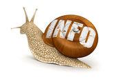 Informação de caracol — Fotografia Stock