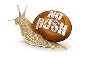 No rush Snail — Stock Photo