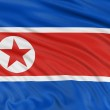 North Korean flag — Stock Photo #32981189