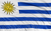 Uruguayan flag — Stock Photo
