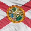 Florida Flag — Stock Photo