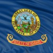 Idaho Flag — Stock Photo #33487107