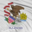 Stock Photo: Illinois Flag