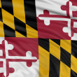 Stock Photo: Flag of Maryland, USA