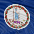 Virginia Flag — Stock Photo