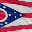 Stock Photo: Flag of Ohio