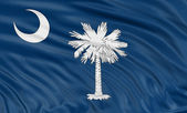 Flag of the state of South Carolina — Stock Photo