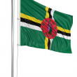 Stock Photo: Flag of Dominica.