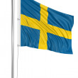 3D Swedish flag — Stock Photo #34132067