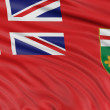 Ontario flag — Stock Photo