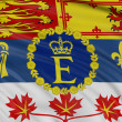 Royal Standard of Canada — Stock Photo