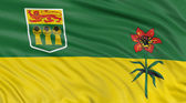 Saskatchewan flag — Stock Photo