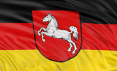 Flag of Lower Saxony — Stock Photo