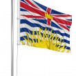 Flag of British Columbia — Stock Photo