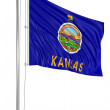 Kansas flag — Stock Photo
