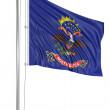 挥舞着国旗的北达科他州 — 图库照片
