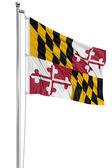 Waving Flag of USA state Maryland — Stock Photo
