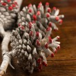 Stock Photo: Christmas fir cone
